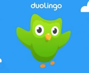 Duolingo app, website not working with error