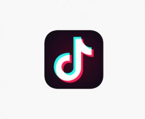 TikTok App Problems