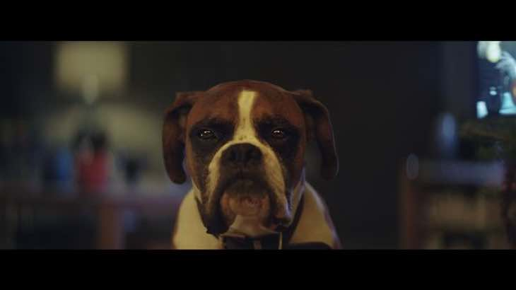2016-john-lewis-christmas-advert-goes-viral