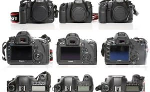 Canon 6D vs. 5D Mark III and 6D internal review