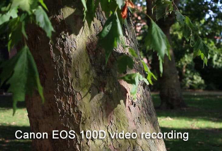 Canon-EOS-100D-video-recording