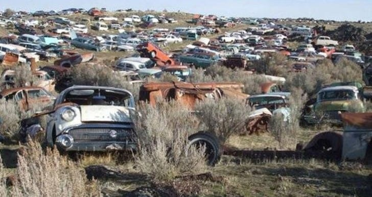 Classic cars for sale including residing land