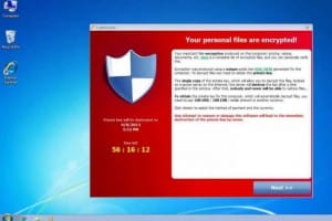 Cryptolocker files recovery program