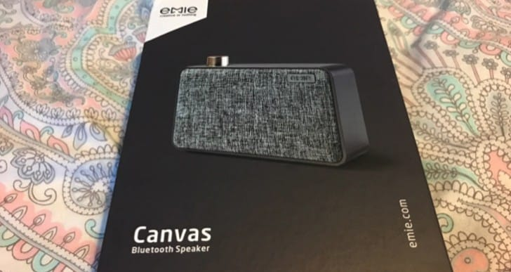 Emie Canvas Portable Bluetooth Speaker review with excellent looks