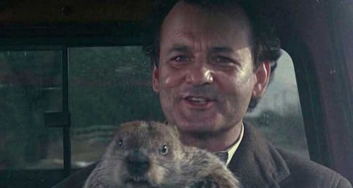 Groundhog Day 2015 app advises on activities