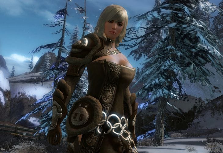 Guild Wars 2 closed beta bracing China next month