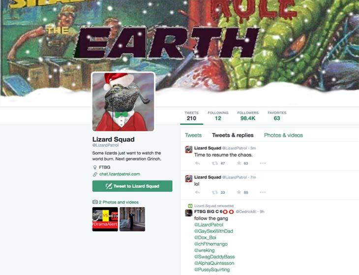 Lizard-Squad-Twitter-growth