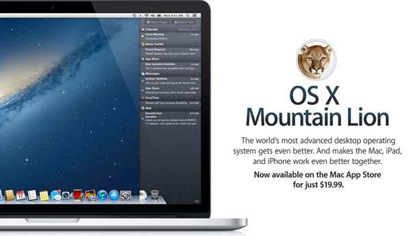 Mountain Lion has various crash problems
