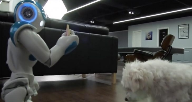 $8,000 Robot aims to give a dog a Pop Tart, outcome?