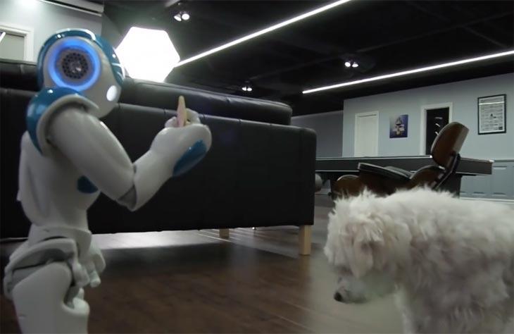 NAO-robot-dog-snack
