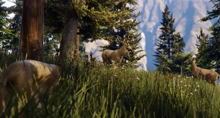 A Plus Auto >> New GTA V wildlife in PS4, PC, XB1 trailer – Product Reviews Net