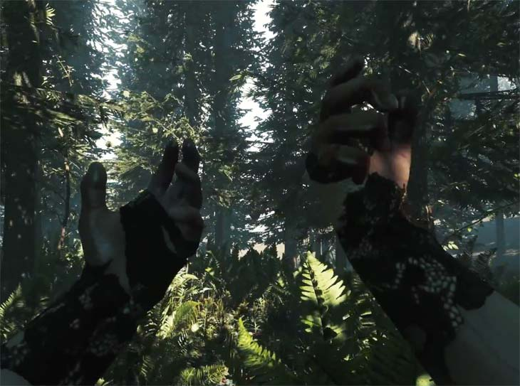 New-PS4-Share-game-with-The-Forest
