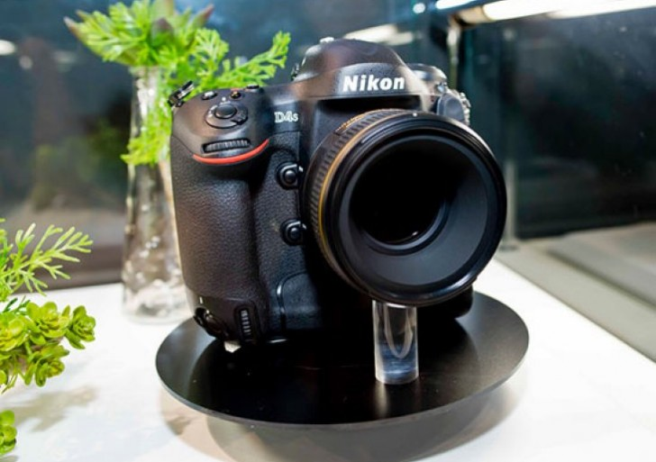Nikon D4S official debut expected at February press event