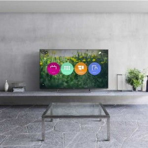 Panasonic 65-inch OLED outdoes Samsung S UHD models