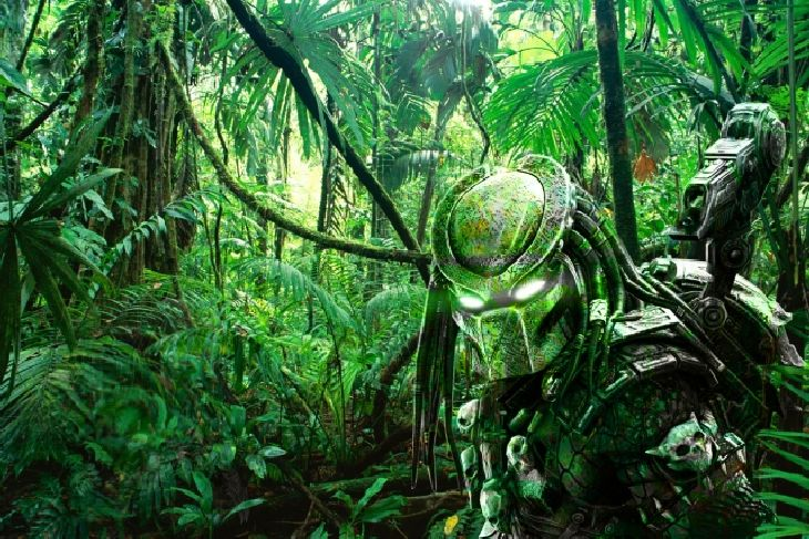 Predator-Jungle