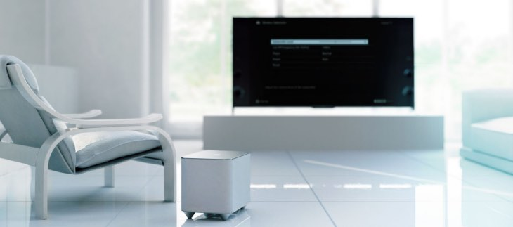 Review of Sony Wireless Subwoofer SWF-BR100
