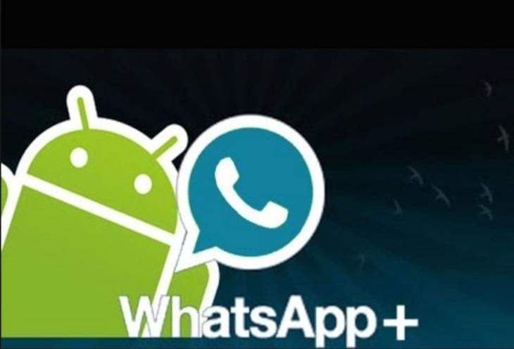 WhatsApp-Plus-not-working