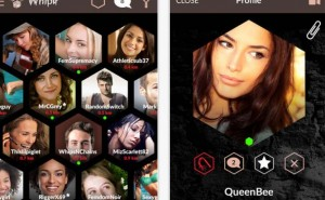 Whiplr, the Fifty Shades-inspired Tinder app fee extortionate