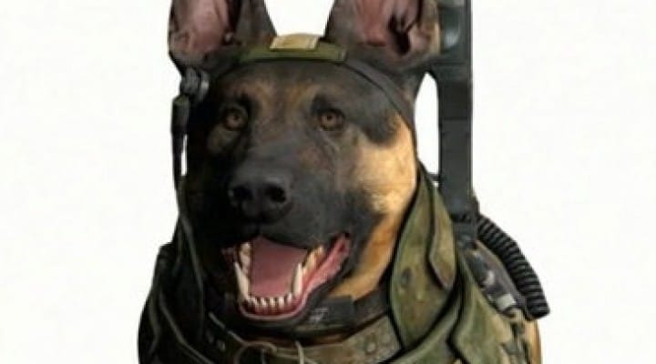 Call of Duty Ghosts has Kinect, dog commands possible