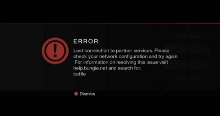 Destiny Banjo, Cattle error problems today