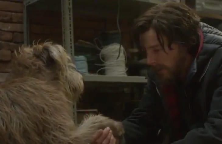 dr-strange-heals-a-dog-scene