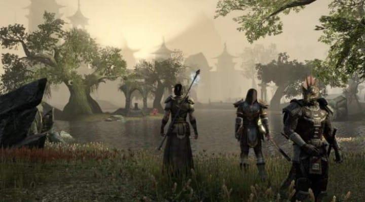 First Elder Scrolls Online PS4 raw gameplay
