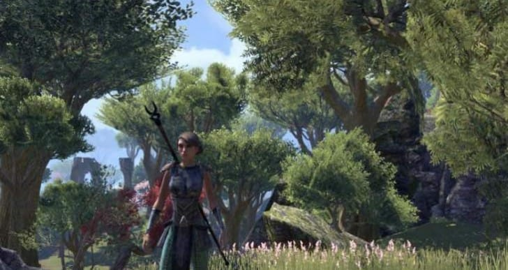 Elder Scrolls Online server status shows USA down