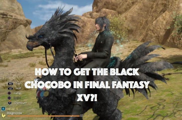 ffxv-how-to-get-black-chocobo