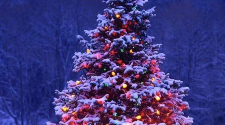 GTA V Christmas Apartment with tree inside