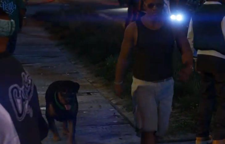gta-v-your-personal-dog