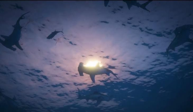 hammer-head-sharks-gta-v