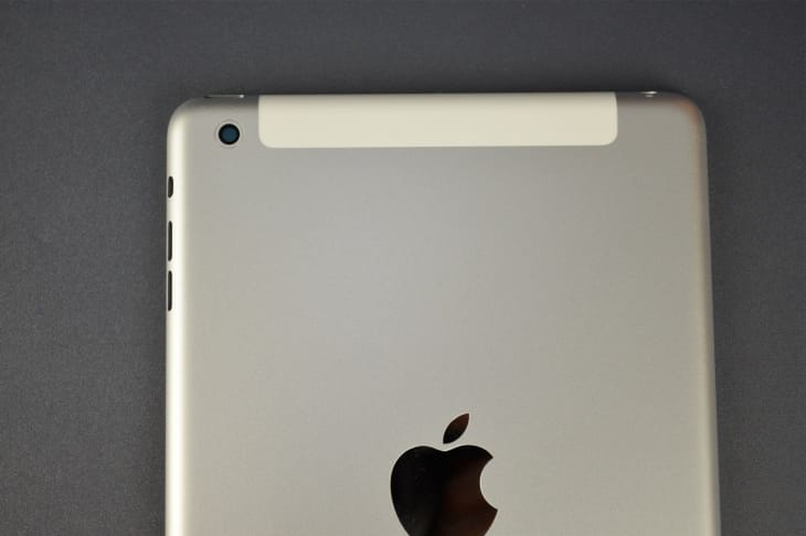 iPad mini 2 pre-launch model
