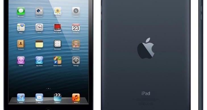 iPad mini: 2 stylish cases at a price