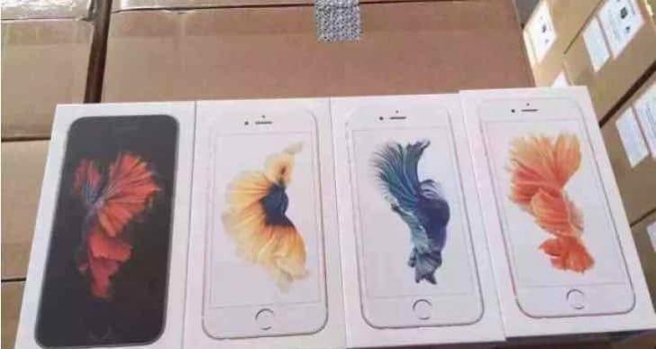 iPhone 6s shipping status, preparation begins