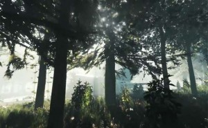 New PS4 Share game with The Forest
