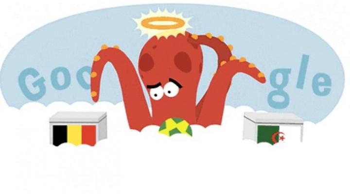 Paul the Octopus predicts Belgium Vs Algeria
