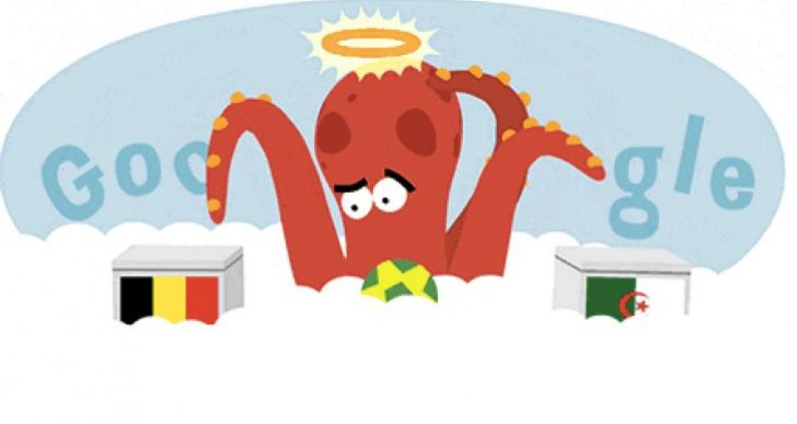 Paul the Octopus predicts Belgium Vs Algeria