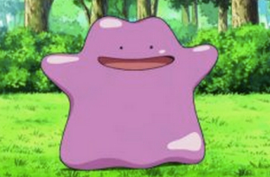 Have you caught a Ditto yet!?