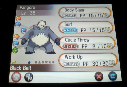 Are you looking to use Pangoro in the game?