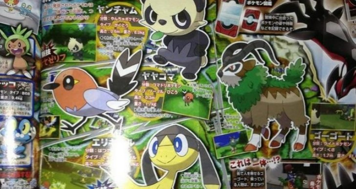 Pokemon X and Y custom mode, new fighting type unveiled