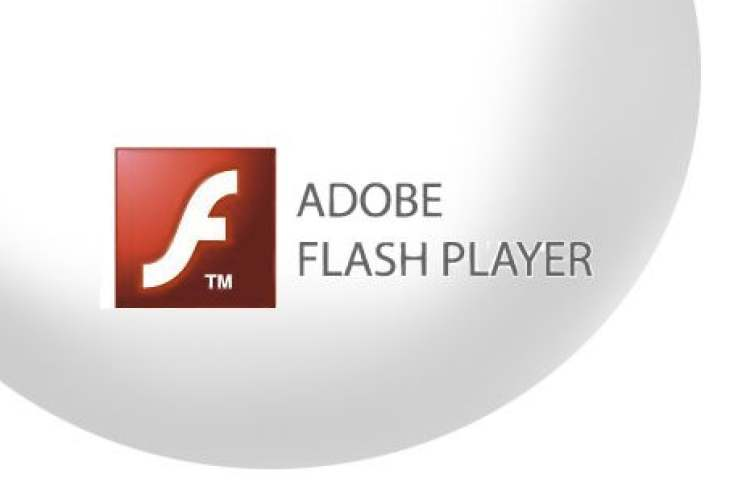 browser support flash player
