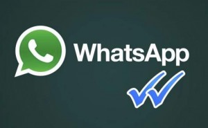 Remove Whatsapp blue ticks with 2.11.426 downgrade