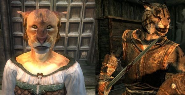Skyrim races vs oblivion – a graphical comparison