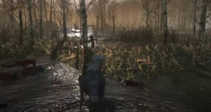 The Witcher 3 water graphics unrivalled
