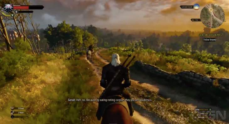 the-witcher-3-pc-graphics