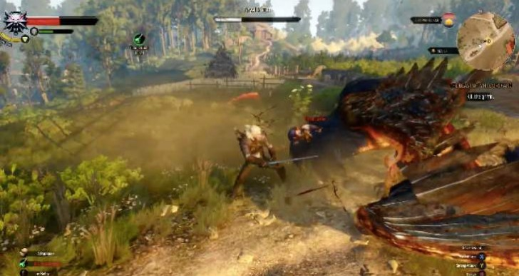 The Witcher 3 boss fight gameplay with griffin