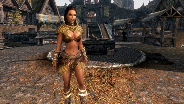 Skyrim Women Mods http://www.product-reviews.net/2011/12/19/women-in-skyrim-are-prettier-with-new-coverwomen-mod/